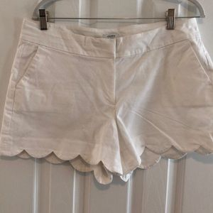Crown and ivy scalloped cuff shorts